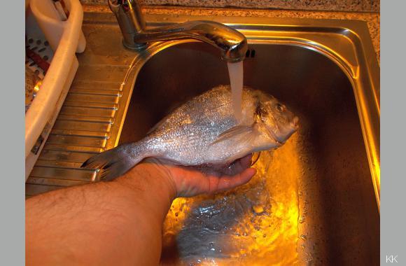 Auch wenn der Fisch entschuppt wurde; Spülen Sie den Fisch mit kaltem Wasser ab!