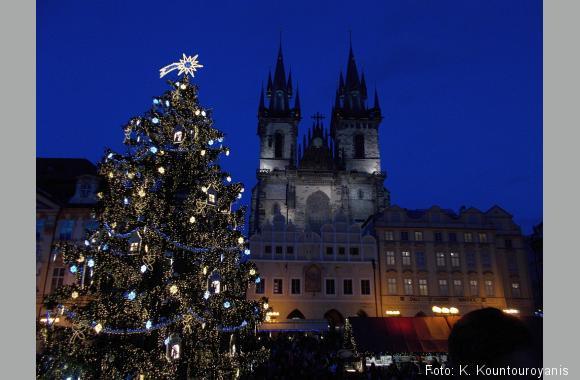 Weihnachtsbaum vor der Teynkirche. Hauptsache es schmeckt. Foto: K. Kountouroyanis